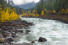 Yellow trees and whitewater rapids. Stock Photo