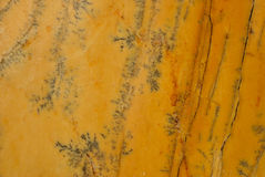 Yellow Triana marble Royalty Free Stock Photo