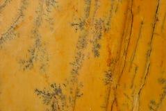 Yellow Triana marble Royalty Free Stock Photo