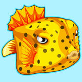 Yellow tropical fish on blue background. Vector. Series of exotic fish characters Stock Photos