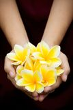 Yellow tropical flowers on hands Royalty Free Stock Photo