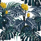Yellow tropical flowers and monster leaves dark blue background. Seamless beach wallpaper royalty free illustration