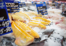 Yellow trout on fish market display Royalty Free Stock Image