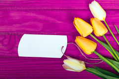 Yellow tulip bouquet and blank card Royalty Free Stock Image