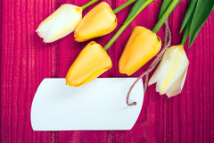 Yellow tulip bouquet and blank card royalty free stock photo