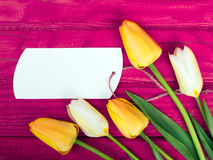 Yellow tulip bouquet and blank card Royalty Free Stock Photos