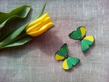 Yellow tulip and butterflies Stock Photography