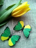 Yellow tulip and butterflies Royalty Free Stock Image