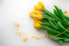 Yellow tulip and a cup of hot tea or coffee Royalty Free Stock Image