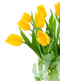 Yellow tulip flowers in glass vase Stock Image
