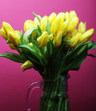 Yellow tulip flowers in glass vase Stock Photography