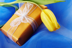 Yellow tulip and gift box Royalty Free Stock Images