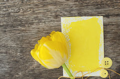 Yellow tulip with a gift card Stock Photography
