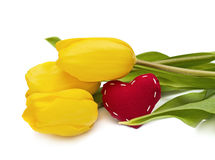 Yellow tulip and the heart Royalty Free Stock Photos