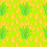 Yellow tulip seamless pattern Stock Images