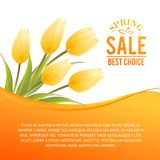 Yellow tulip spring bouquet for sale. Stock Image
