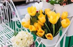 Yellow tulip in White vase Stock Images