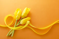 Yellow tulips. And ribbons on orange background Royalty Free Stock Images