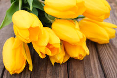 Yellow tulips on a background of old wood Stock Photos