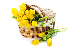 Yellow tulips in a basket Stock Photography