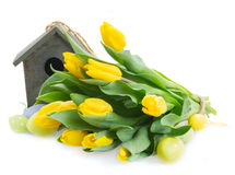 Yellow tulips  with birdcage Royalty Free Stock Image