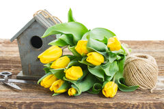Yellow tulips  with birdcage Stock Images