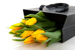 Yellow tulips in black paper bag Royalty Free Stock Photos