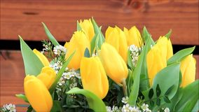Yellow tulips bouquet with white little blossoms. Rotate stock video footage