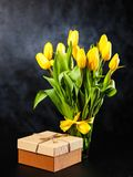 Yellow tulips on dark background Stock Photos