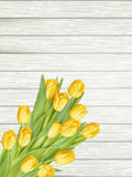 Yellow tulips. EPS 10 stock illustration