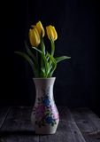 Yellow tulips flowers Stock Photos