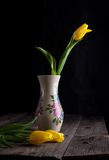 Yellow tulips flowers Royalty Free Stock Photos