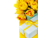 Yellow tulips and gift box Stock Image