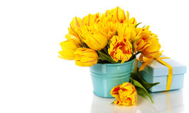 Yellow tulips and gift box Royalty Free Stock Photo