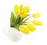 Yellow tulips in a jug Stock Photos