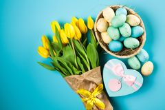 Yellow tulips on blue background Stock Image