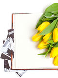 Yellow tulips lying on book with photographs Stock Images