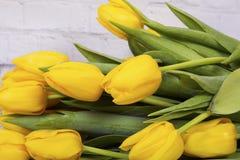 Yellow tulips. Macro shot Stock Photo