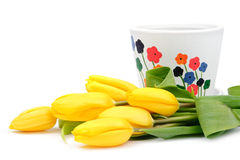 Yellow tulips near flowerpot Stock Photo