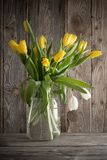 Yellow tulips on old wooden background Stock Images
