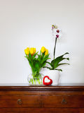 Yellow tulips and orchids Stock Images
