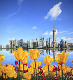 Yellow tulips prospect of Shanghai the Bund's landmark skyline. Shanghai's landmark skyline tulips garden prospect of green concept in city landscape Royalty Free Stock Photography