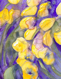 Yellow tulips on purple with gold dots Stock Photography