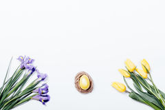 Yellow tulips, purple irises and nest with Easter egg on a white Royalty Free Stock Image