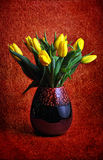 Yellow tulips in red vase on red background, spring or easter flowers, background photography for holiday Royalty Free Stock Photo