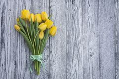 Yellow tulips with ribbon on wooden background stock images