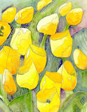 Yellow tulips and starry skies abstract watercolor painting Royalty Free Stock Images