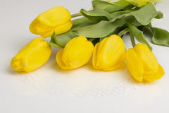 Yellow tulips on the table Royalty Free Stock Photography