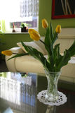 Yellow tulips on the table stock image