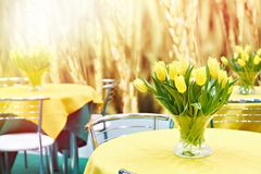Yellow tulips on tables in interior stock image